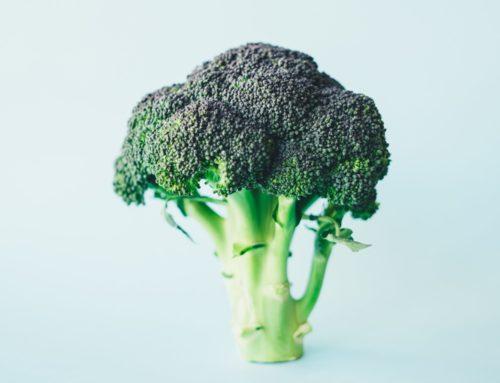 Νοέμβριος – Φρούτα και λαχανικά εποχής